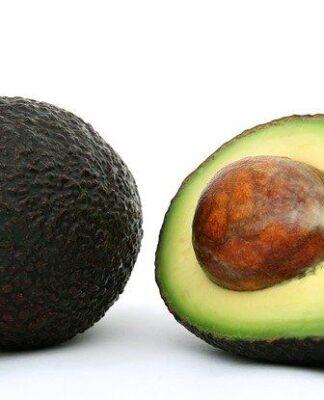 owoc awokado