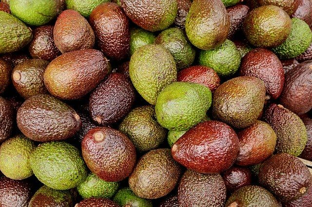 owoce awokado