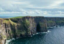 piwo guiness i Irlandia