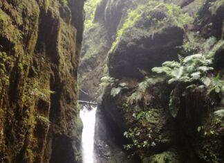 co zwiedzić na Maderze