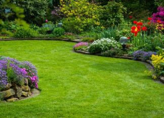 Najpiękniejszy ogród w okolicy